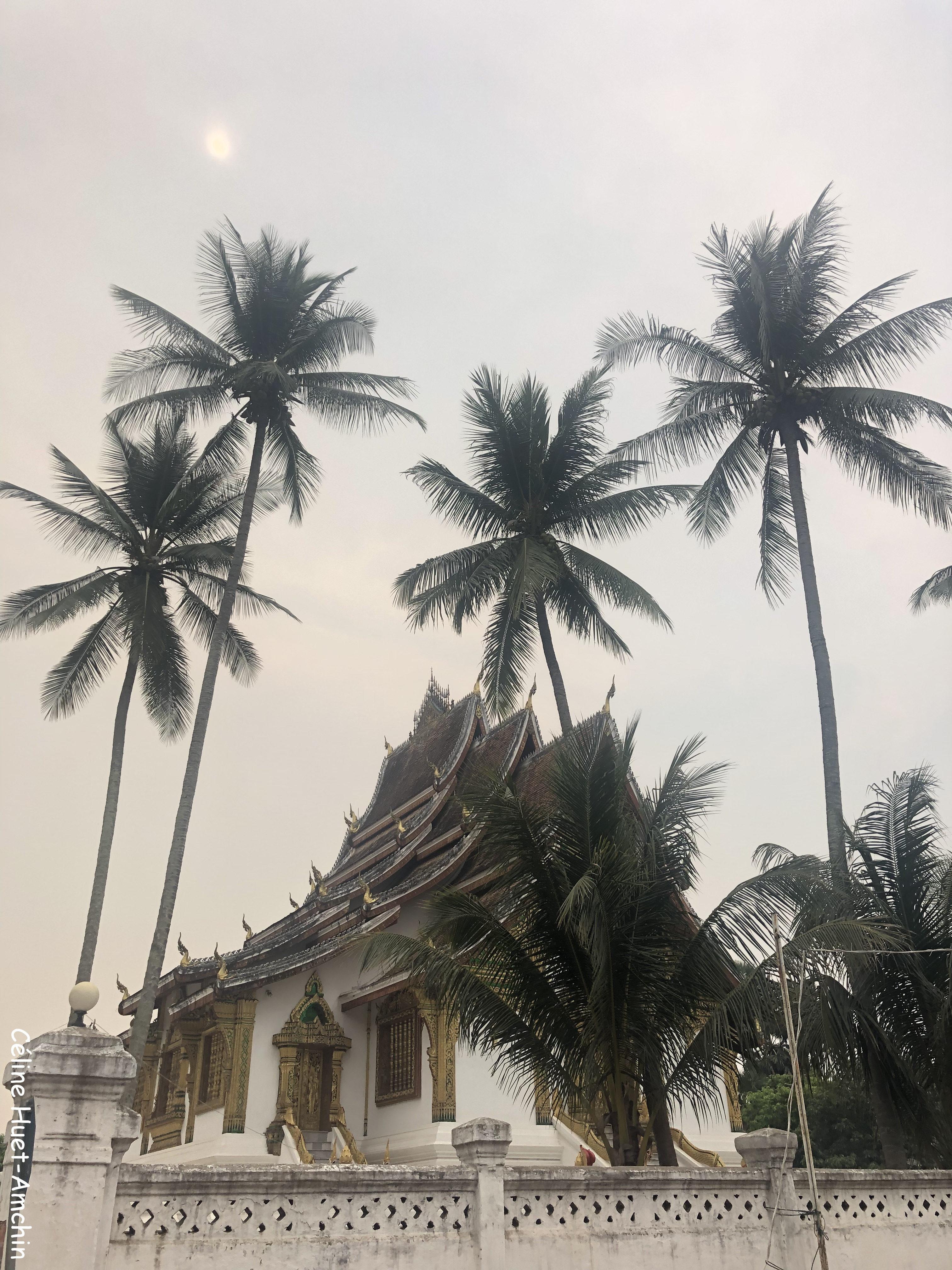 Wat National Museum Luang Prabang Laos Asie