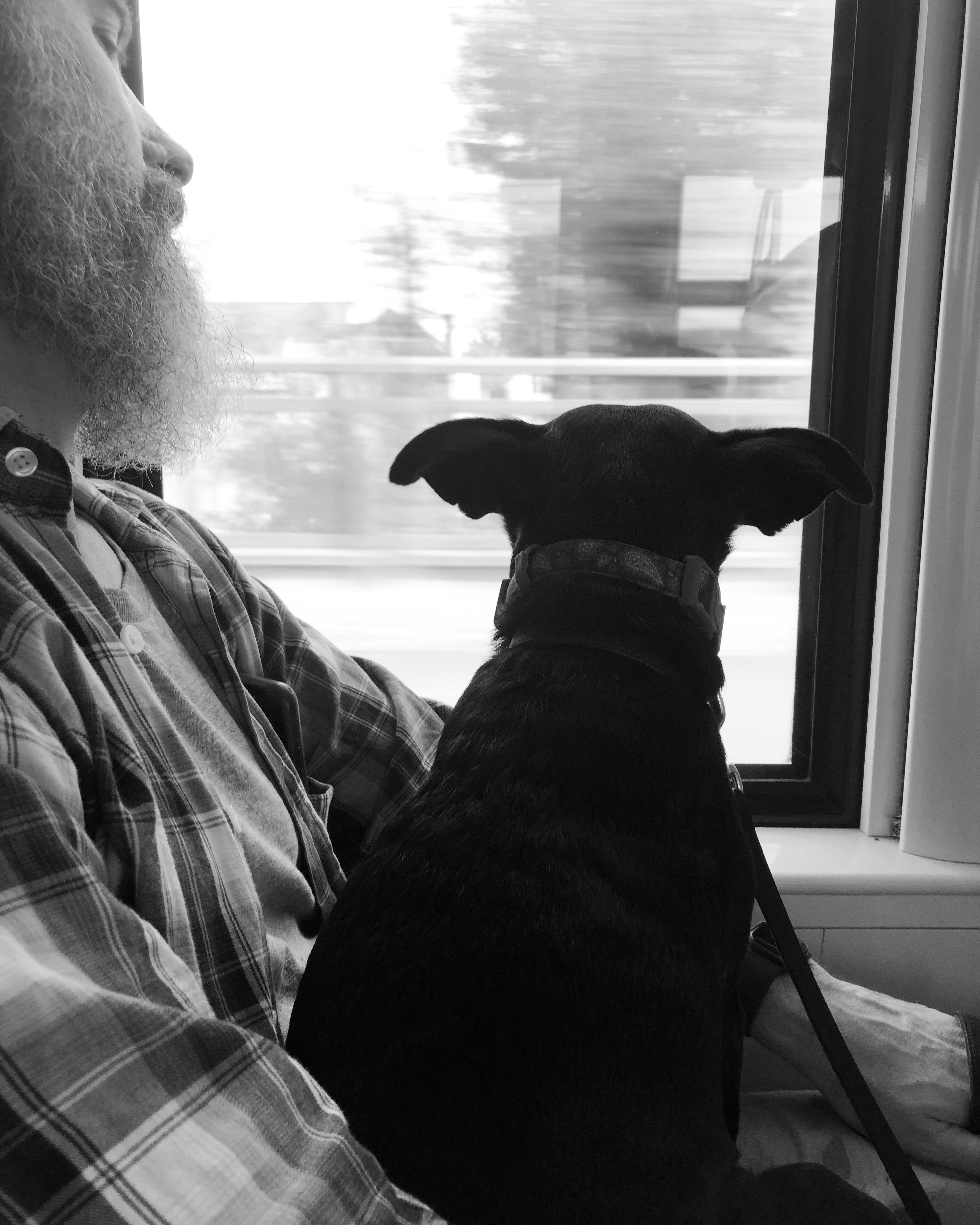 Dans le train Paris-Joigny