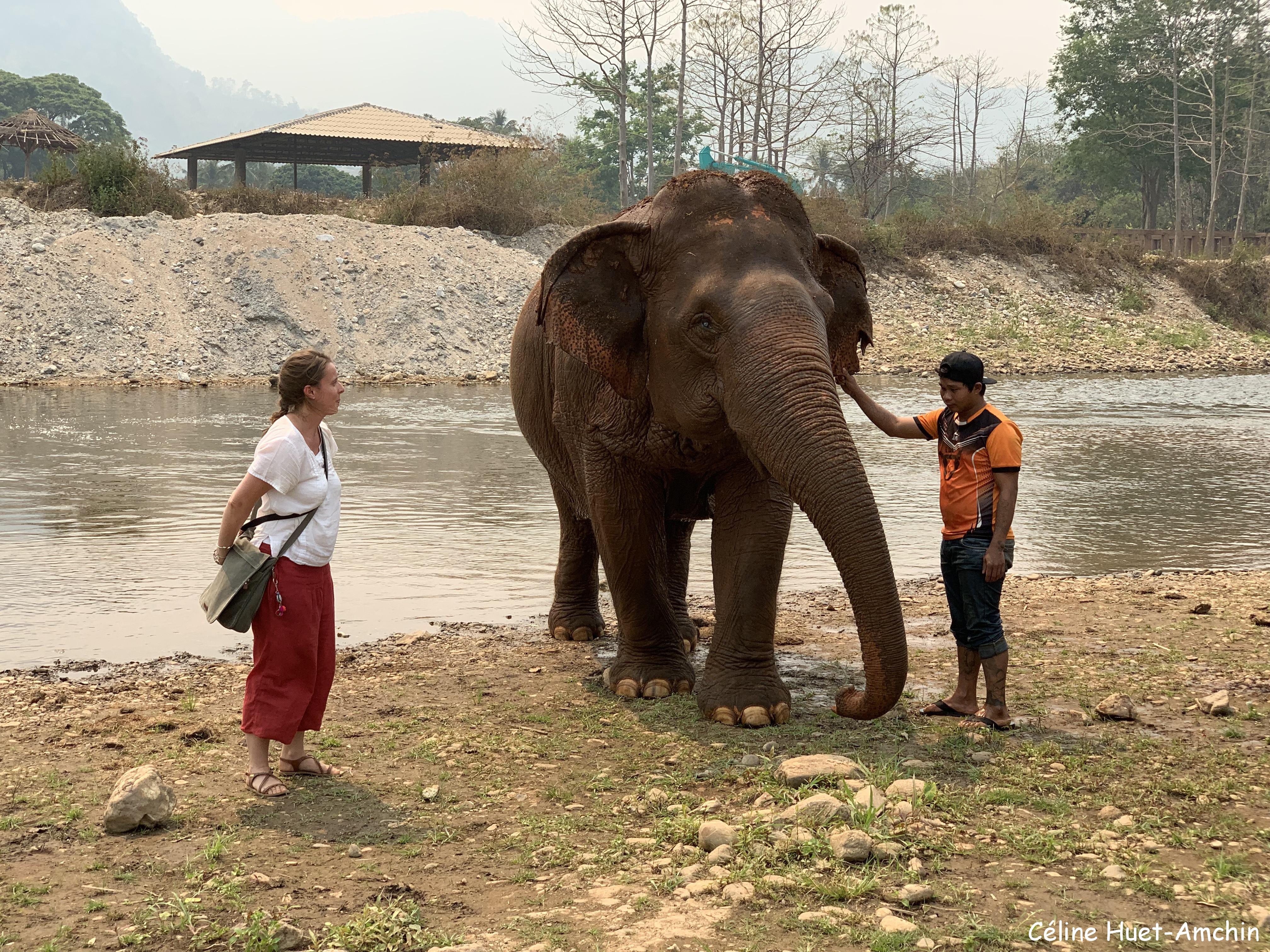 """Jokia """"ma filleule"""" et son mahout Elephant Nature Park Chiang Mai Thaïlande Asie"""