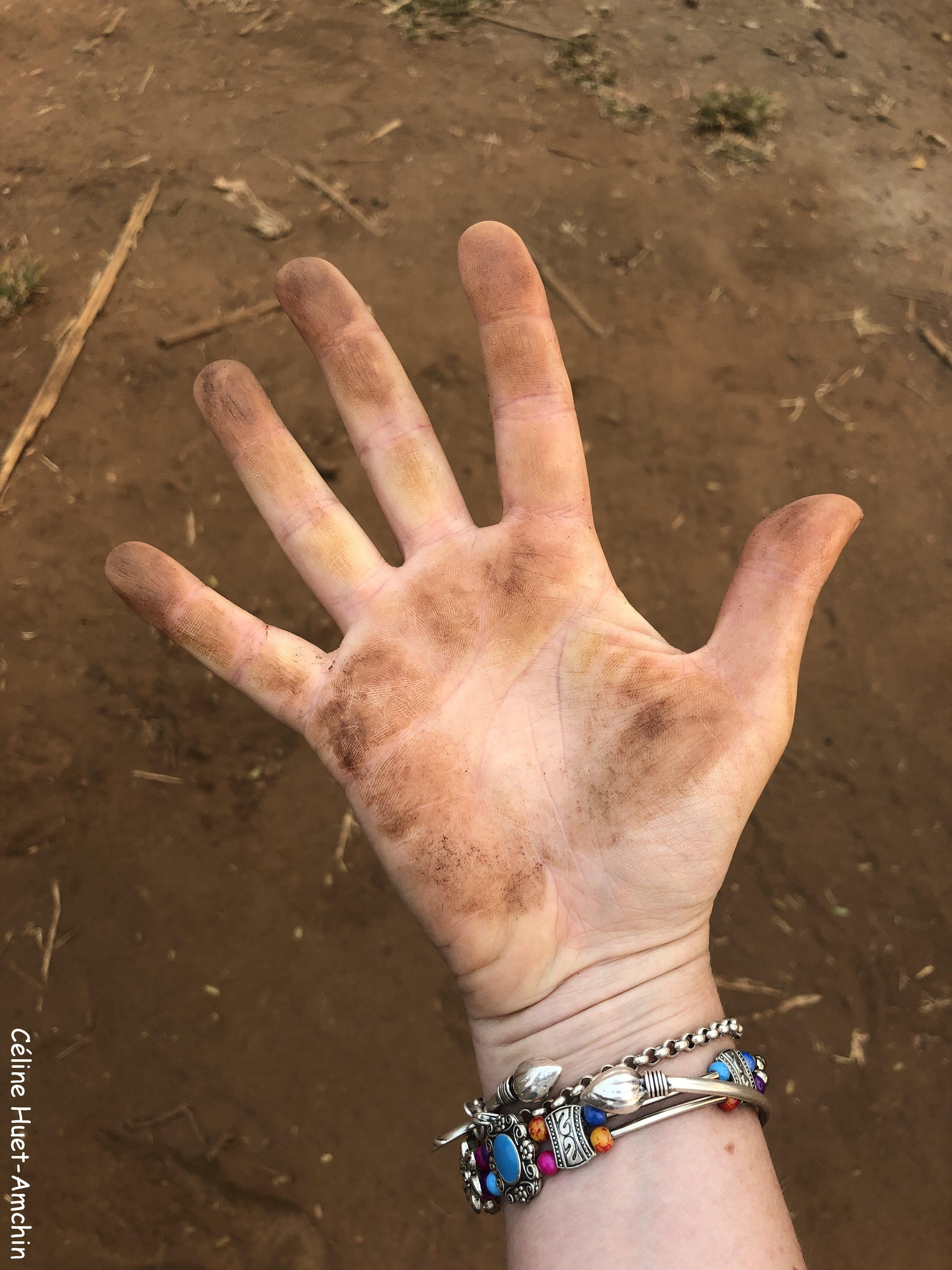 Ma main après avoir donné à manger aux éléphants Elephant Nature Park Chiang Mai Thaïlande Asie