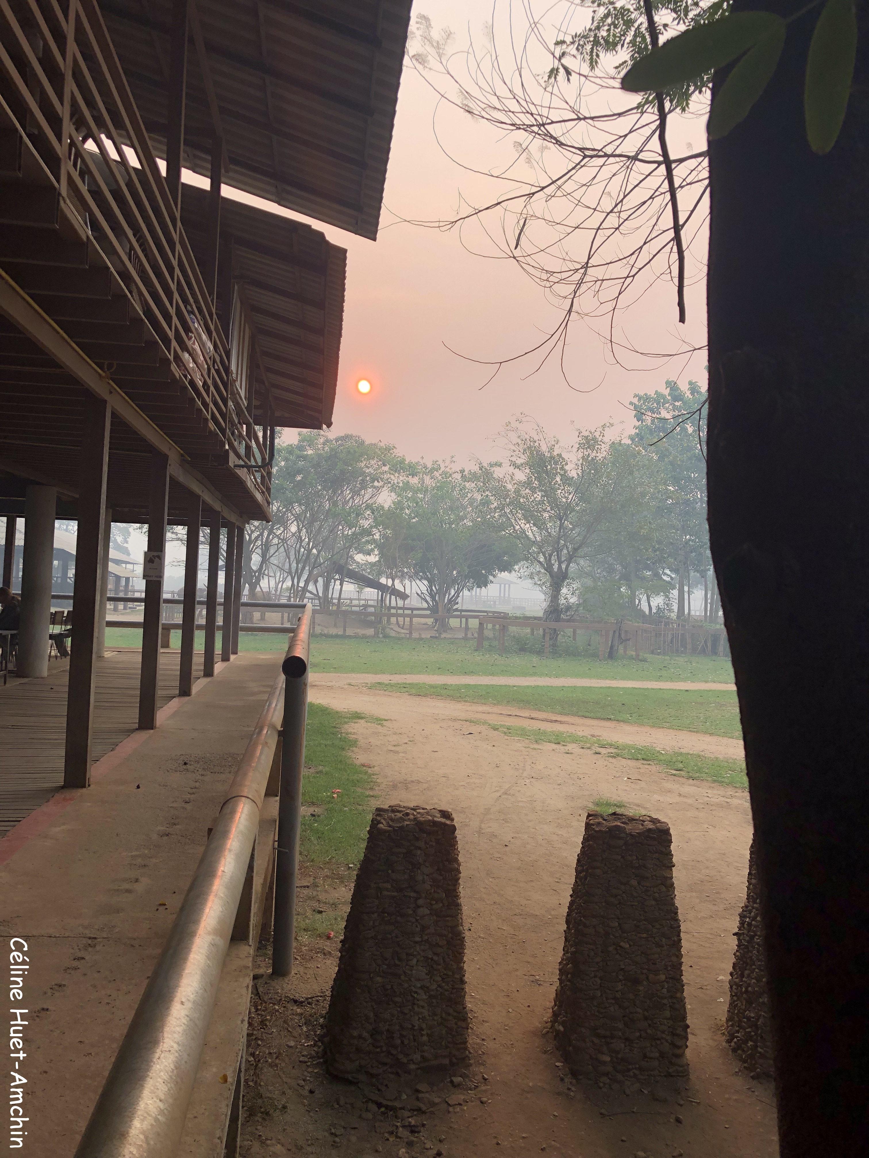 Lever de soleil Elephant Nature Park Chiang Mai Thaïlande Asie