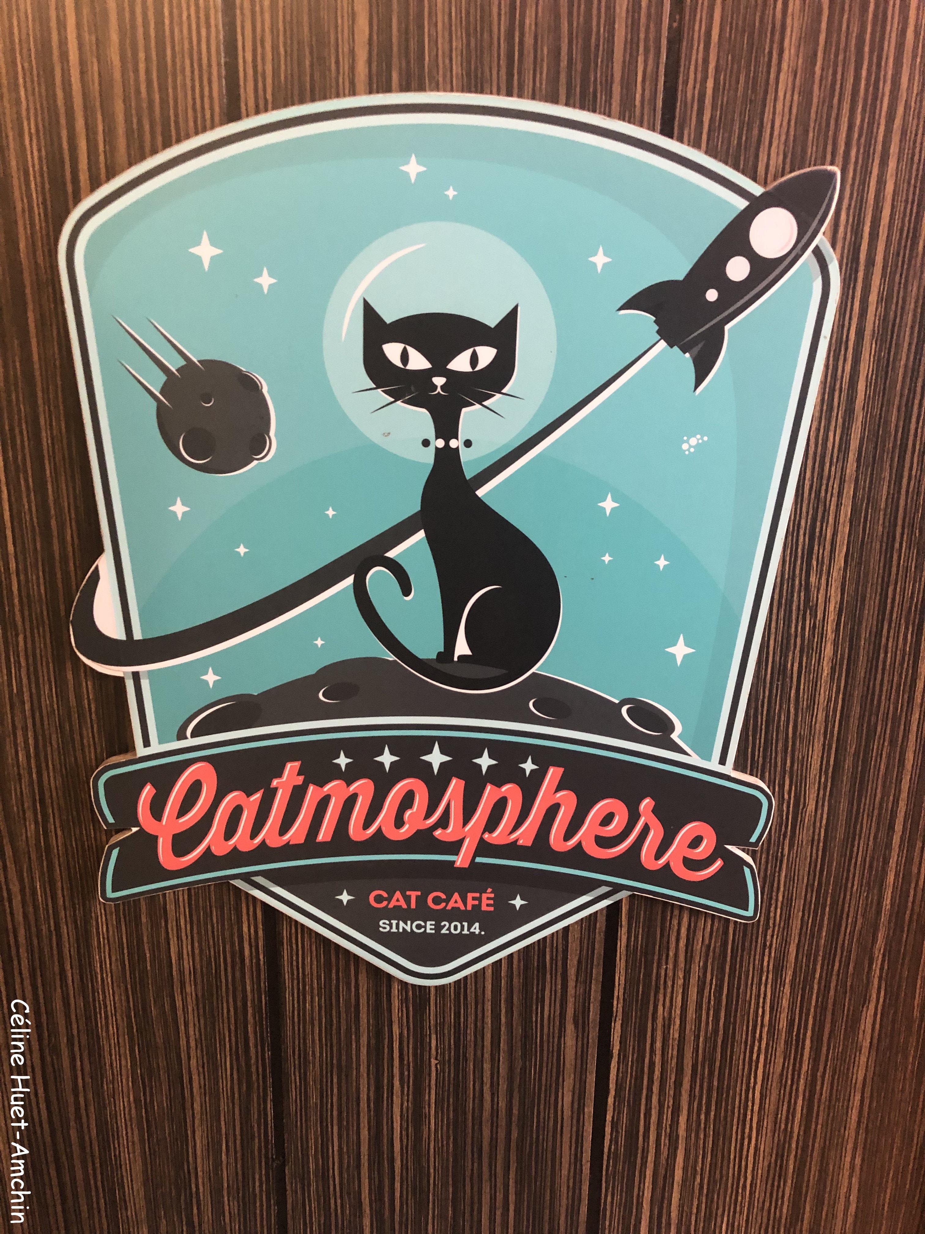 Catmosphère Cat Café Chiang Mai Thaïlande Asie