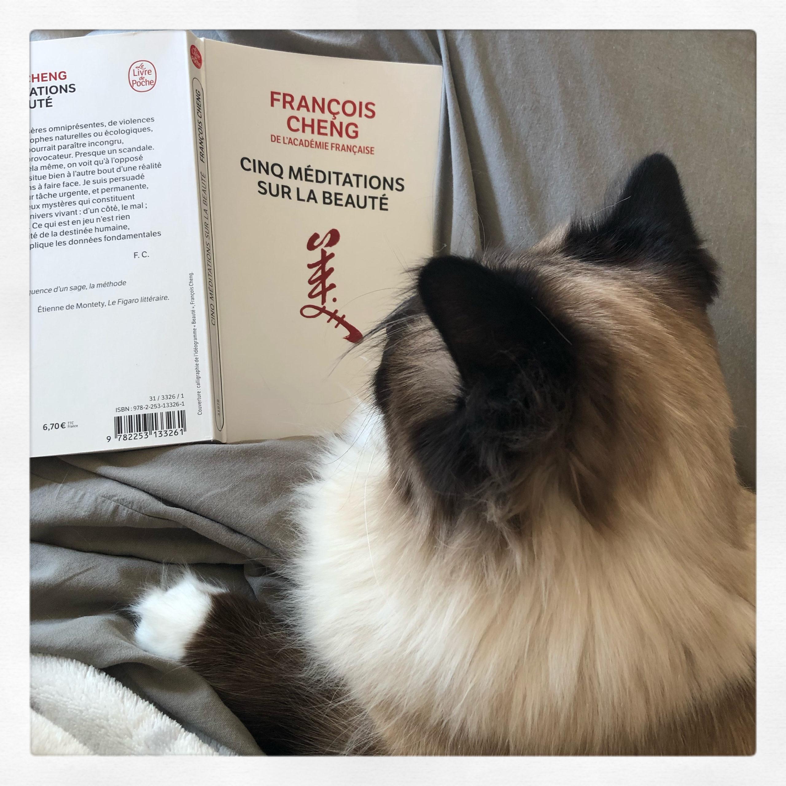 """""""Cinq méditations sur la beauté"""" de François Cheng..."""