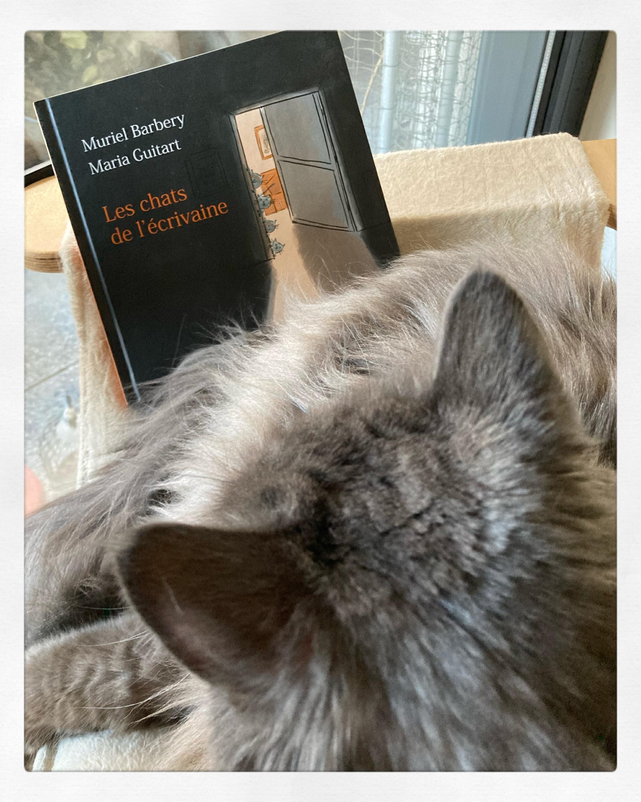 """""""Les chats de l'écrivaine"""" de Muriel Barbery & Maria Guitart..."""